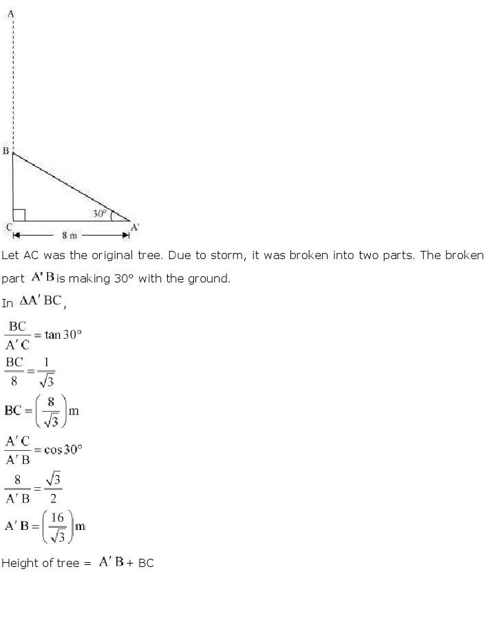 10th, Maths, Some Applications of Trigonometry 2