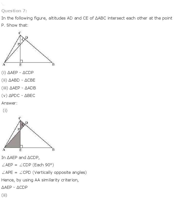 10th, Maths, Triangles 24