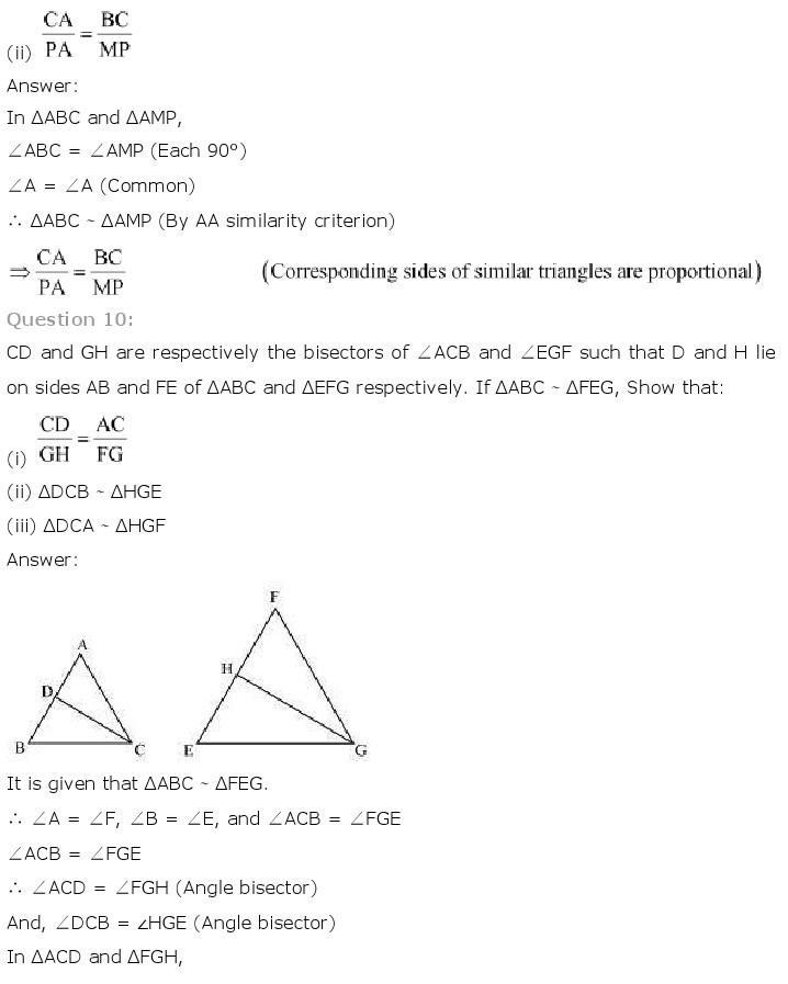 10th, Maths, Triangles 27
