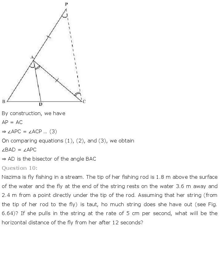 10th, Maths, Triangles 74