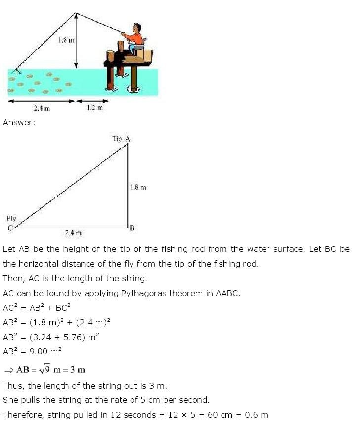 10th, Maths, Triangles 75