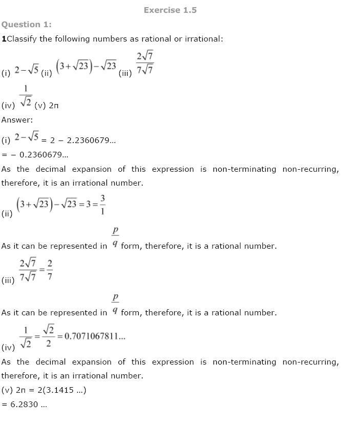 Number Systems NCERT Solutions 13